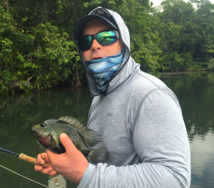 A beautiful mojarra, one of Costa Rica's most under-appreciated fly rod gamefish.