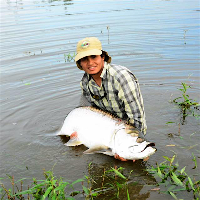 Fly fish in costa rica a banner year for costa rica s for Costa rica fishing season